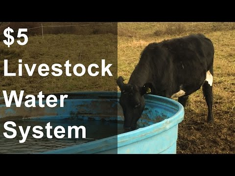 $5 Livestock Water Source