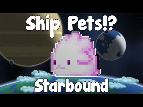 Ship Pets - Starbound Guide Nightly Build