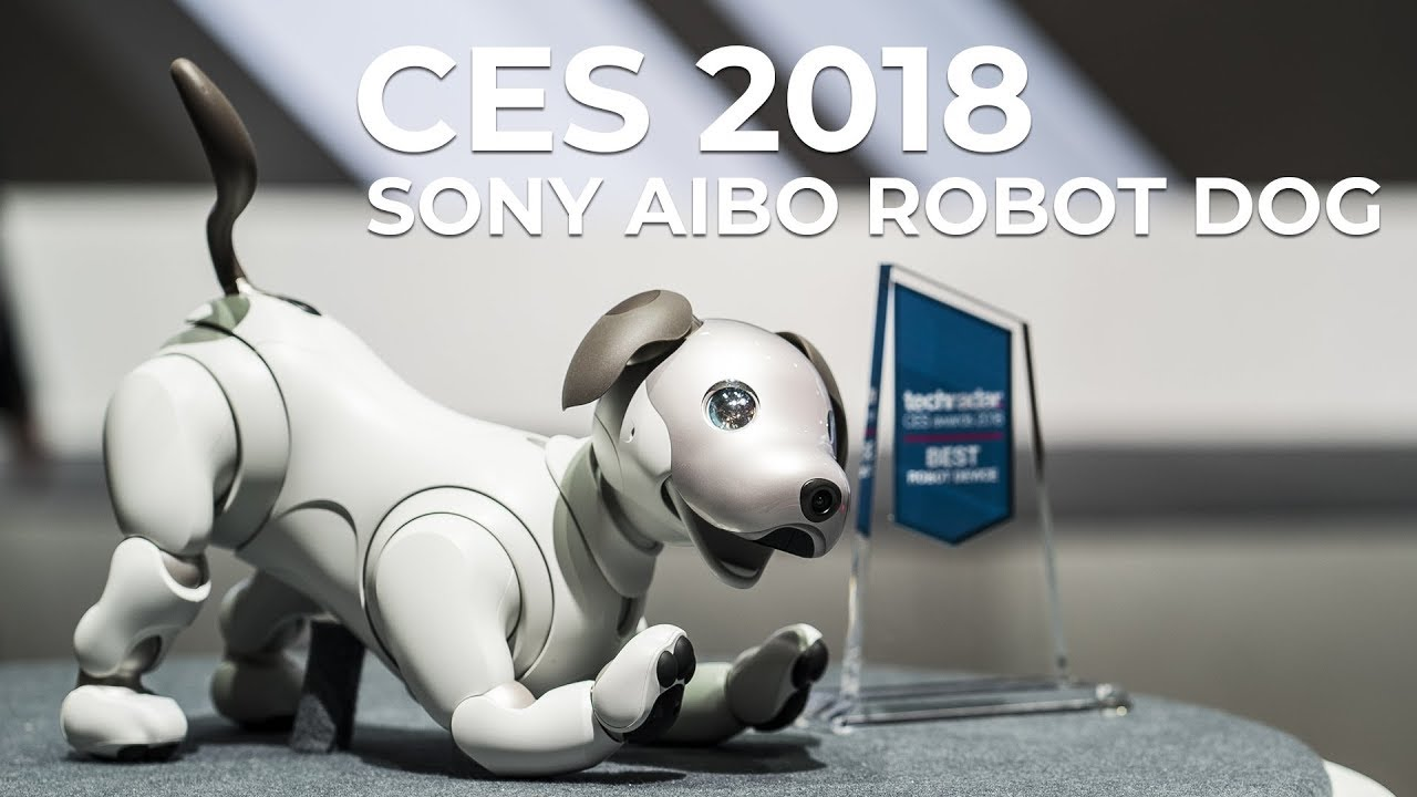CES 2018 - Sony's Aibo Robot Dog at the Consumer Electronics Show