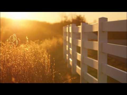Aphex Twin - Lichen (Vance Edwards Remix)