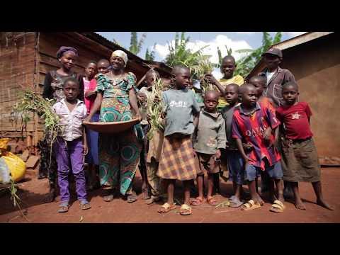 Elle sème le monde de demain en RD Congo