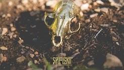 Sapient - L.I.E. (Official Video)