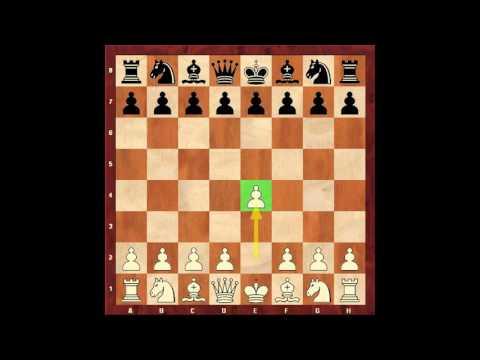 Бессмертная партия Давида Бронштейна. Королевский гамбит. Шахматы. Евгений Гринис