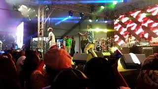 Harmonize_tz perfoming kwa ngwaru at #koroga festival  (+254 Kenya)(track of the year) t