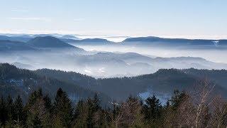 The Black Forest 3D (Doku, deutsch, über den Schwarzwald, ganze Dokumentation)