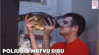POLJUBIO MRTVU RIBU! 🤮| Videostar 3|Epizoda 6