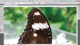 Illustrator Tutorial: Live Trace -HD-