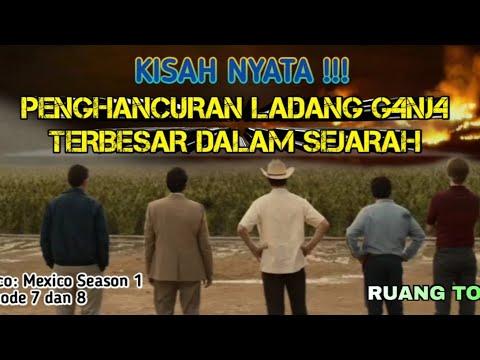 Download LADANG G4NJOY TERBESAR DI DUNIA   Alur Cerita Series #4