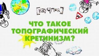 Что такое топографический кретинизм? - Научпок
