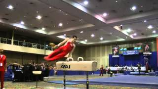 Pommel horse - Russian wendeswing over both pommels (E)