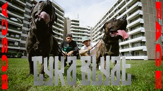 FACE feat. Bosca - Cyka Blyat [OFFICIAL VIDEO] (prod. Anubeatz)