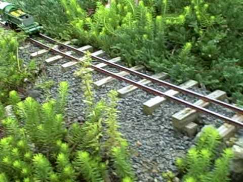 goldloc train