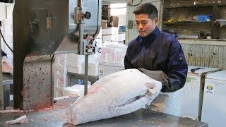 Amazing Cutting Frozen Whole Tuna in Japanese Fish Market!