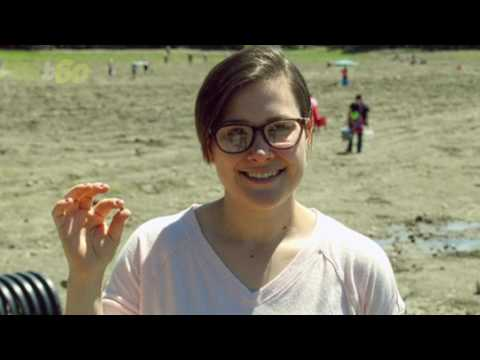 Woman Finds 2.65 Carat Diamond in State Park