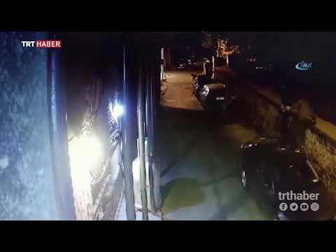 Beyoğlu'nda köpeklerden kaçan vatandaşlar arabaların üzerine çıktı