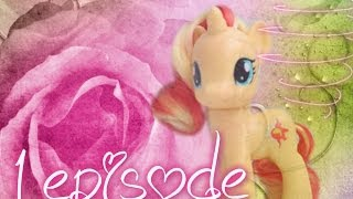 My Little Pony/Пони: