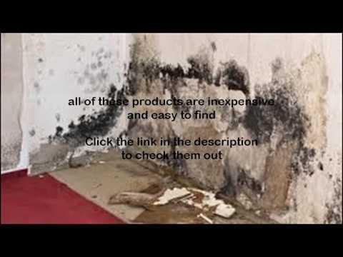 will hydrogen peroxide kill mold youtube. Black Bedroom Furniture Sets. Home Design Ideas