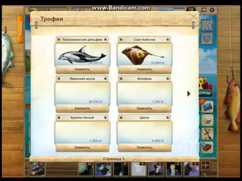 игра на рыбалку в вк для опытных игроков