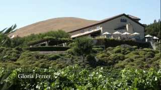 Discover Sonoma Wineries HD 2012