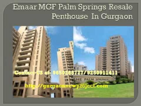 Emaar MGF Palm Springs Resale Penthouse In Gurgaon