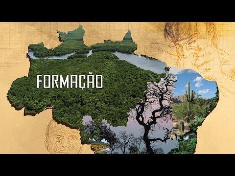 Sobre o Bioma Amazônia