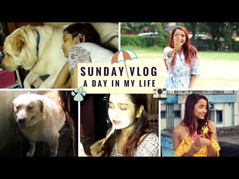 SUNDAY VLOG | A DAY IN MY LIFE | STRUGGLE OF OUTDOOR SHOOT | FACIAL AT HOME  | BATHING MY LABRADOR