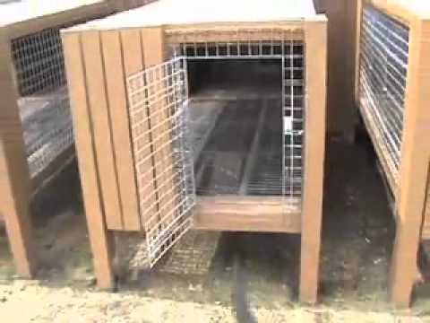 Easy Kennel: Raised Dog Kennel Design - YouTube