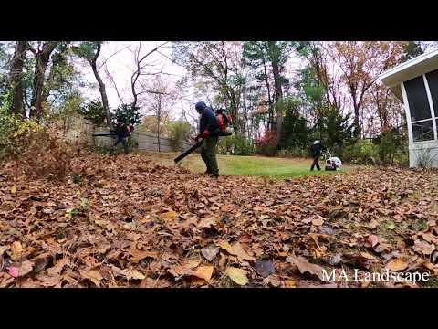 Yard Fall Clean-up Leaf Removal & Lawn Mowing