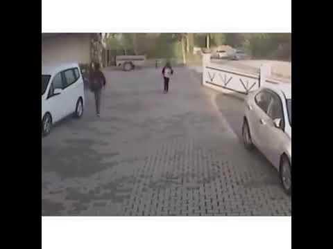 Собаки напали на ребенка | Ужас | Кутырган ит | Uzbek kino 2019 | Yangi film
