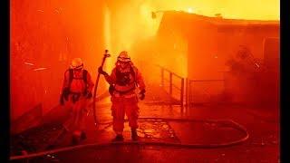 Кого обвинил Трамп из-за лесных пожаров в Калифорнии