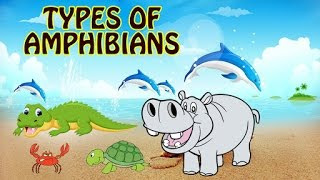 What Are Amphibians? Types Of Amphibians For Kids | Fun & Learn | Preschool Learning Videos For Kids
