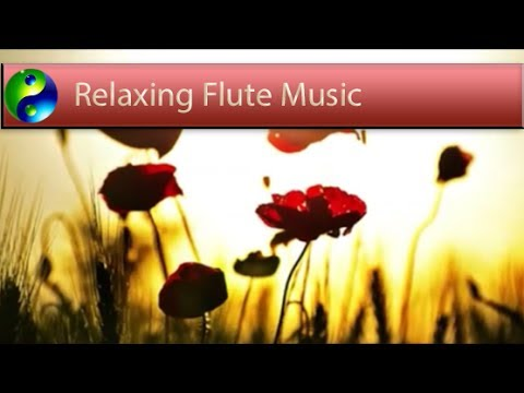 Relaxing Music: Reiki Music; Yoga Music; New Age Music; Relaxation Music; Spa Music; 🌅 620