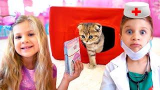 Diana e história sobre como cuidar de gatinho