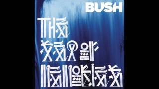 Bush - The Afterlife