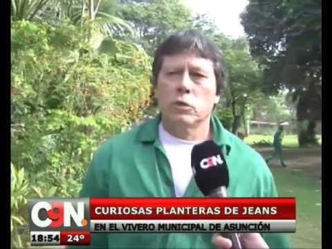 La novedosa opci n de planteras en el vivero municipal de for Viveros en paraguay