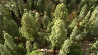 Terra X - Faszination Erde - Der Wilde Westen