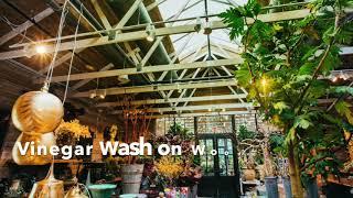 Zebby Sulecki Inc., Devon Yard:  Urban Outfitters, Terrain Cafe, Anthropologie