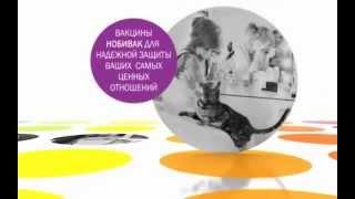 видео Nobivac Tricat Trio: вакцина для кошек