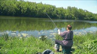Рыбалка на реке Дон 19/05/2019 Разнорыбица на фидер