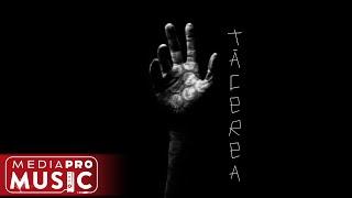 Descarca Dragos Moldovan - Tacerea (Original Radio Edit)