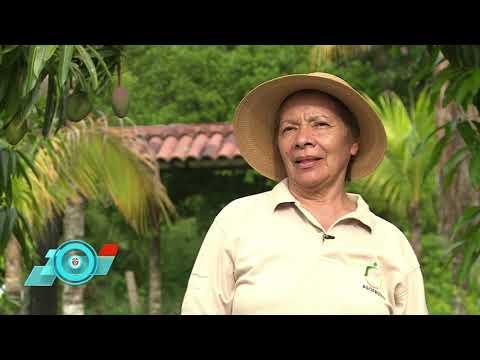 Agrocol.co, la plataforma aliada del agro en el país | #FuturoDigitalTV C44 N5