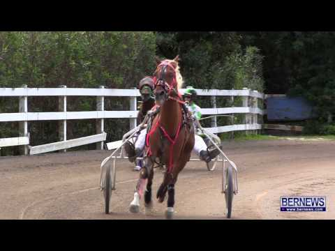 Harness Pony Racing, Jan 13 2013