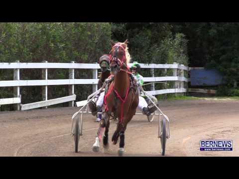 Harness Pony Racing, Jan 13 2013