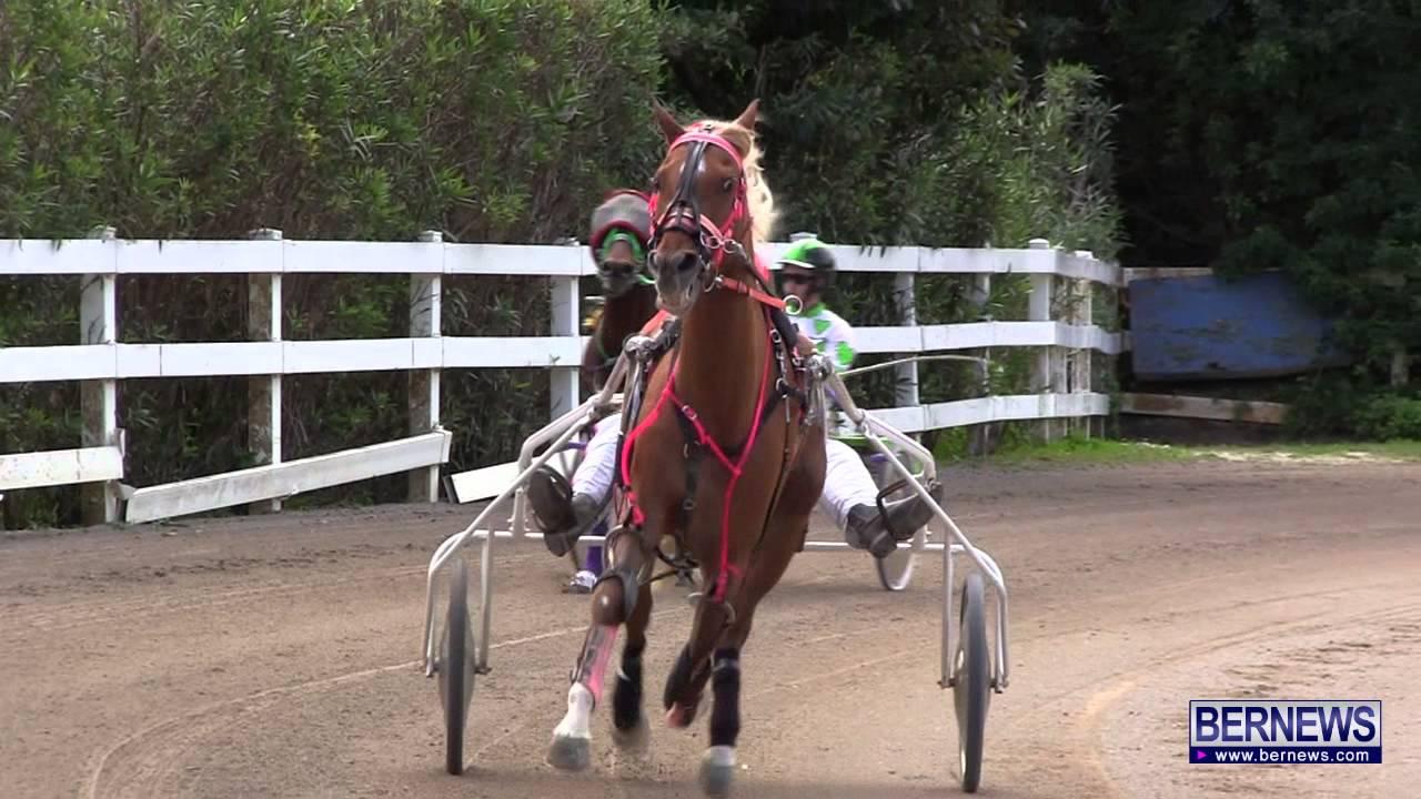 harness pony racing jan 13 2013 [ 1280 x 720 Pixel ]