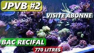 Visite abonné AQUARIUM  RECIFAL [J'IRAI PRESENTER VOS BACS #2] Aquariophilie by aquazen