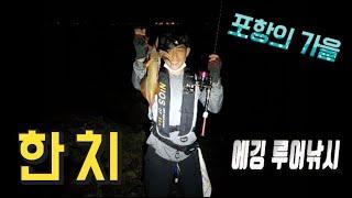[[ bea nong rock]] korea fall Hancio squid egging fishing
