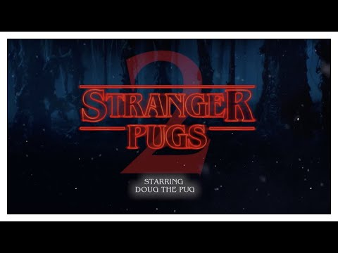Stranger Pugs 2 - Doug The Pug