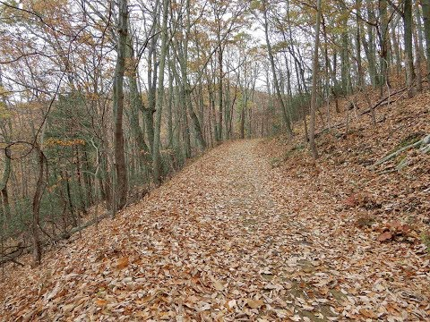 Lands Run - Shenandoah National Park