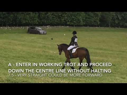Pony Club Grassroots Dressage Test 2018