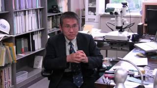論文紹介インタビュー「シダゲノムの解読」長谷部光泰教授
